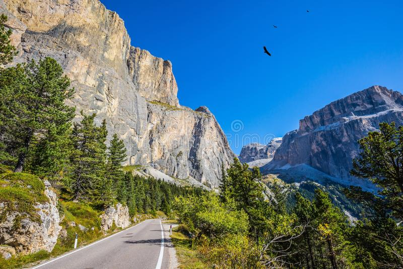 Осень в Tirol стоковое изображение