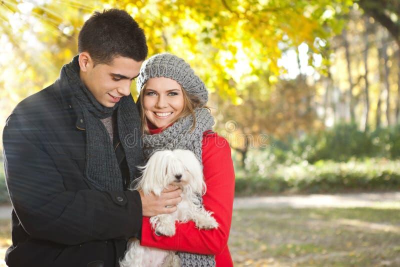 Осень гуляя с собакой стоковые изображения rf