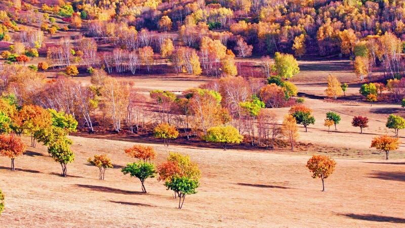 Осень запруды в Внутренней Монголии стоковая фотография