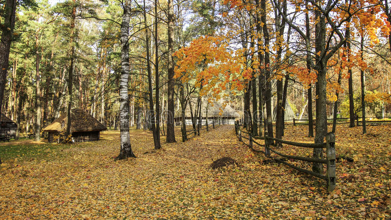 Осень и сторона страны стоковые фото