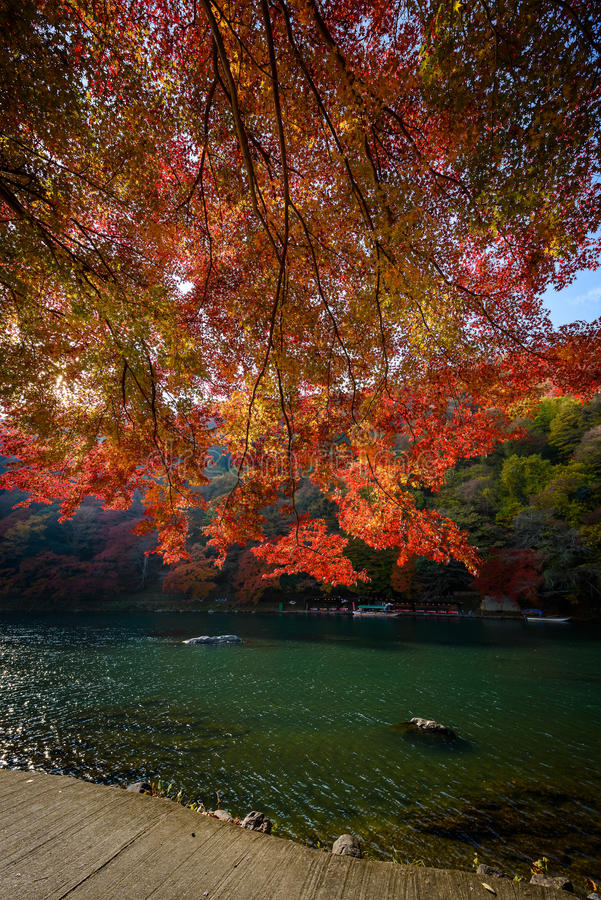 Осень Киото стоковая фотография