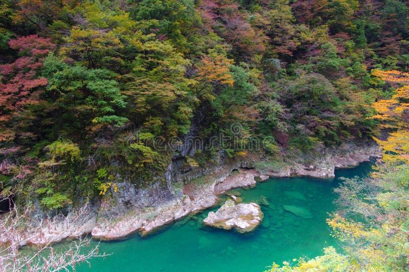 осень красит долину keikoku dakigaeri стоковое фото rf