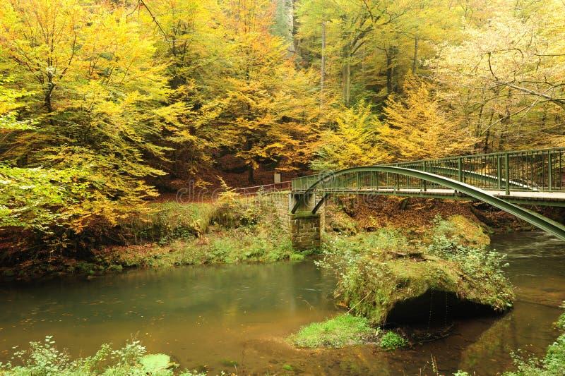 осень красит реку стоковые фотографии rf