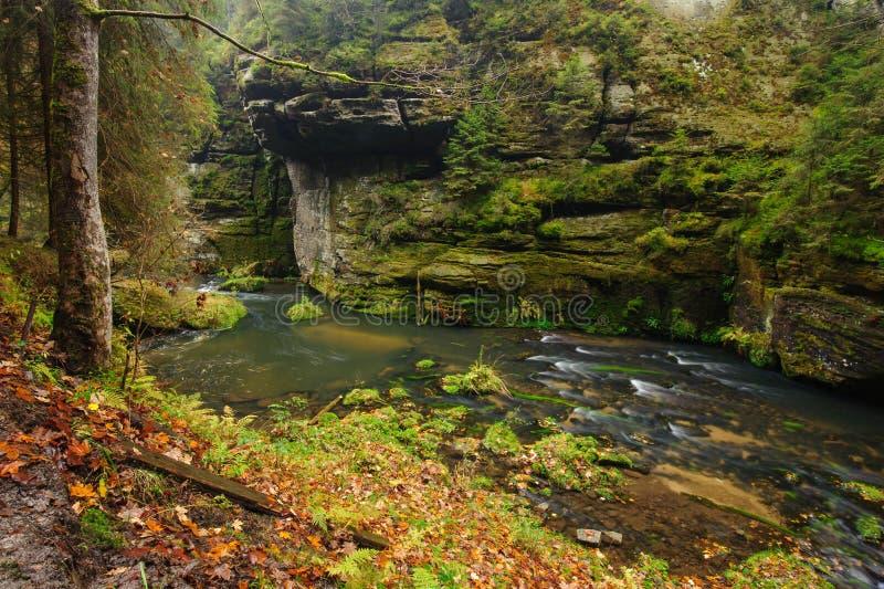 осень красит реку стоковые изображения rf
