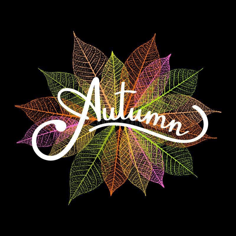 Осень литерности на фоне с каркасными листьями крупный план предпосылки осени красит красный цвет листьев плюща померанцовый такж иллюстрация штока