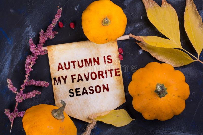 Осень мой любимый сезон стоковые фото