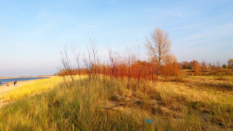 Осень морем стоковые изображения rf