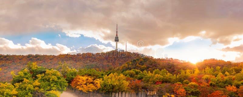 Осень на башне Сеула на горе Namsan в Сеуле, Южной Корее стоковое фото rf