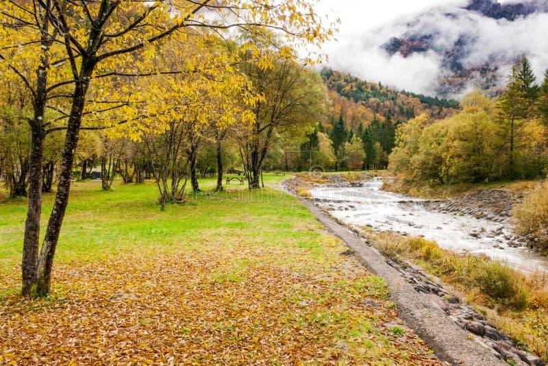 Осень на кровати сухих листьев смотря ландшафт горы стоковые фото