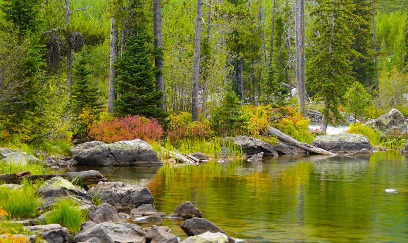 Осень на озере стоковое фото rf
