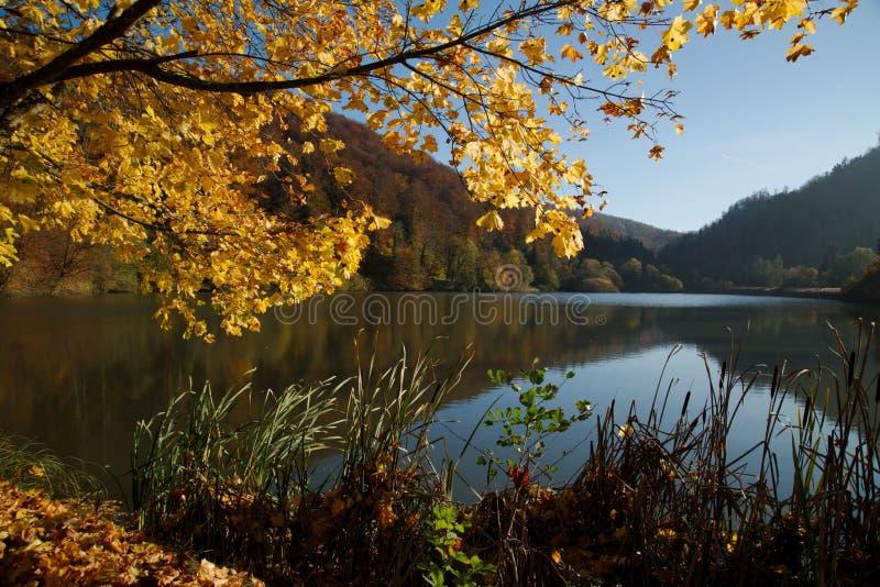 Осень на озере Lucelle в швейцарце Юре стоковая фотография rf