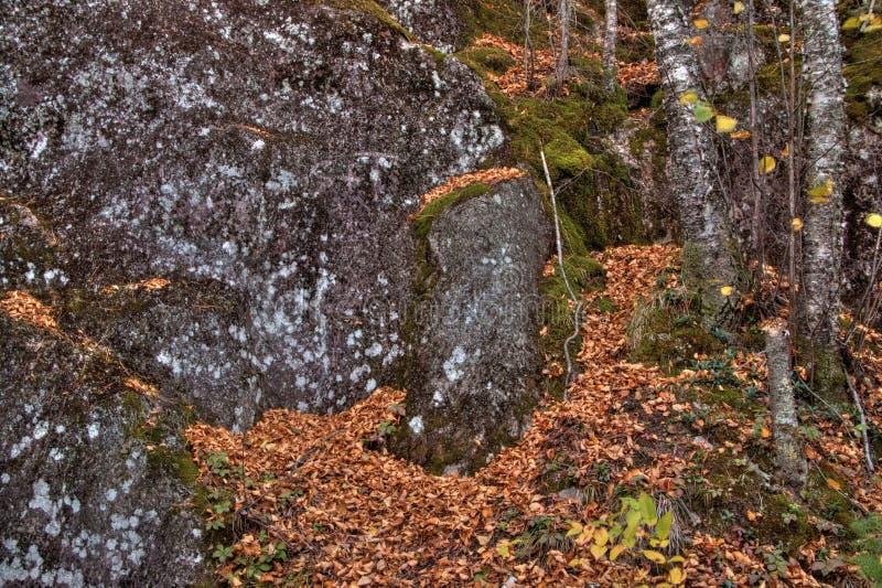 Осень на пике Carlton гор Sawtooth в северной Минесоте на северном береге Lake Superior стоковые фото