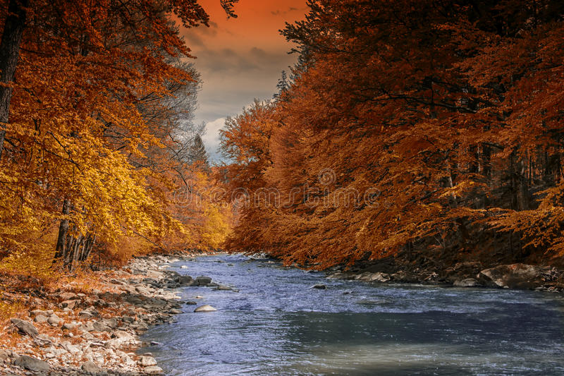 Осень на реке стоковое изображение