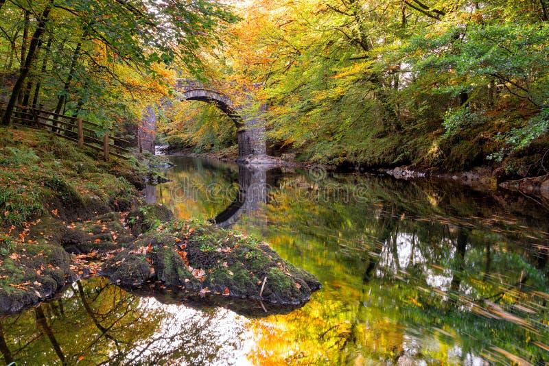Осень на дротике реки стоковые изображения
