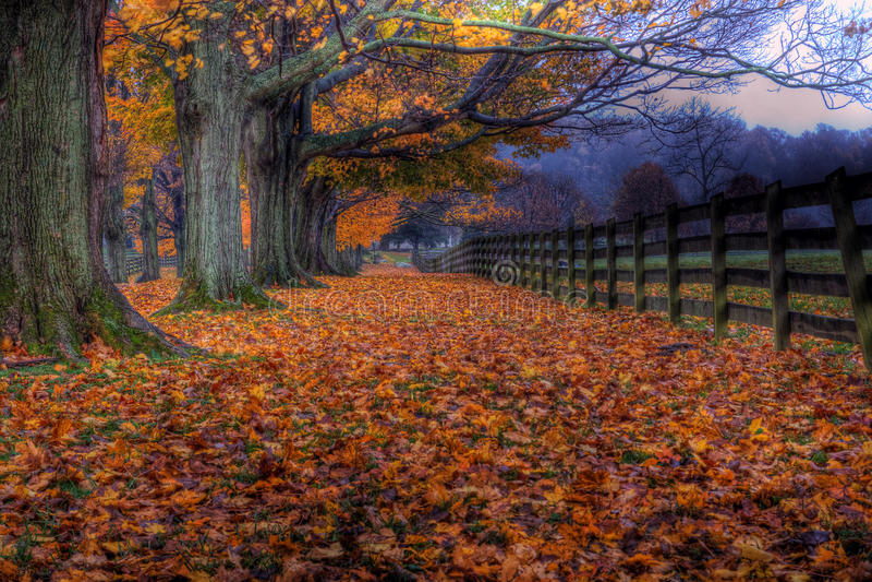 Осень на ферме поместья Springton стоковое изображение