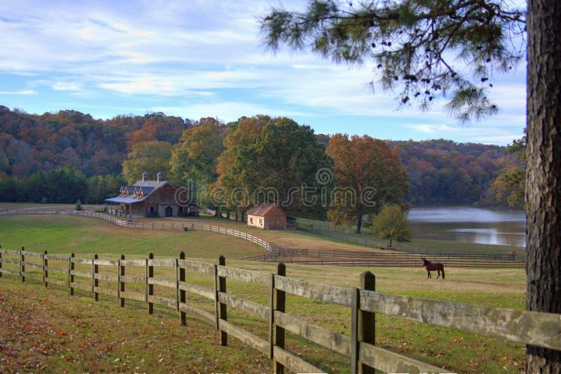 Осень на ферме стоковое изображение rf
