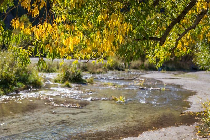 Осень на chanel городка стрелки стоковые фотографии rf