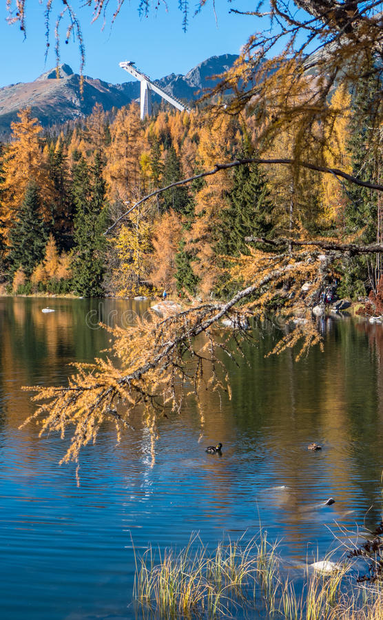 Осень на Strbske Pleso, Словакии стоковые фотографии rf