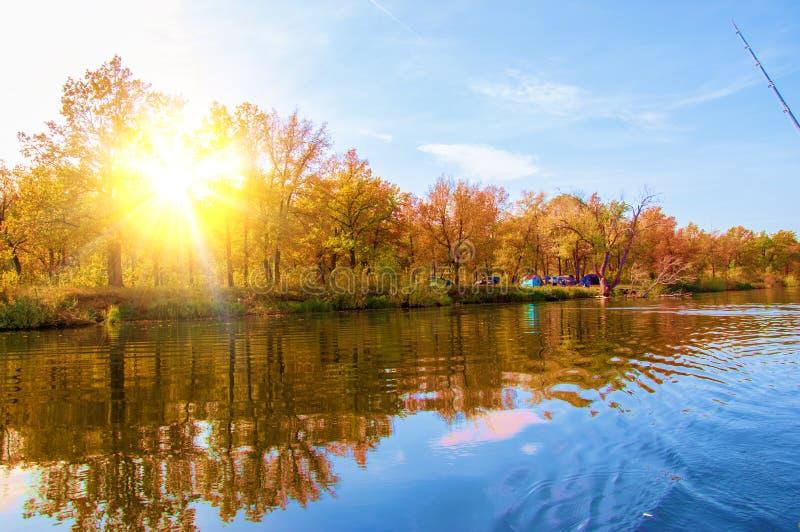 Осень, падение, падение лист, падение лист стоковые изображения
