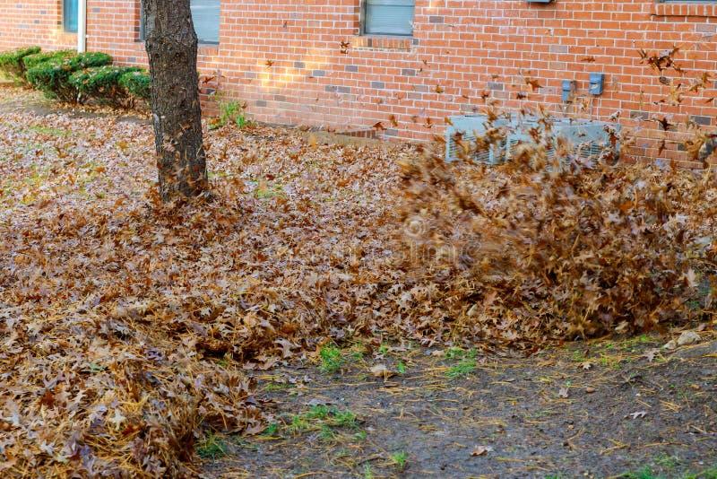 Осень работает воздуходувка лист человека работая стоковые фотографии rf