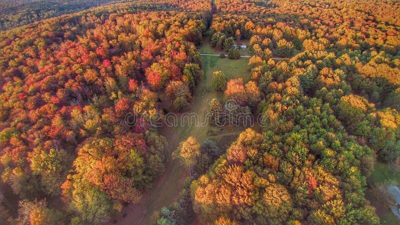 Осень сверху стоковые изображения