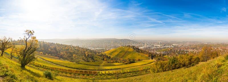 Осень Сцена природы падения Холмы вина стоковая фотография rf