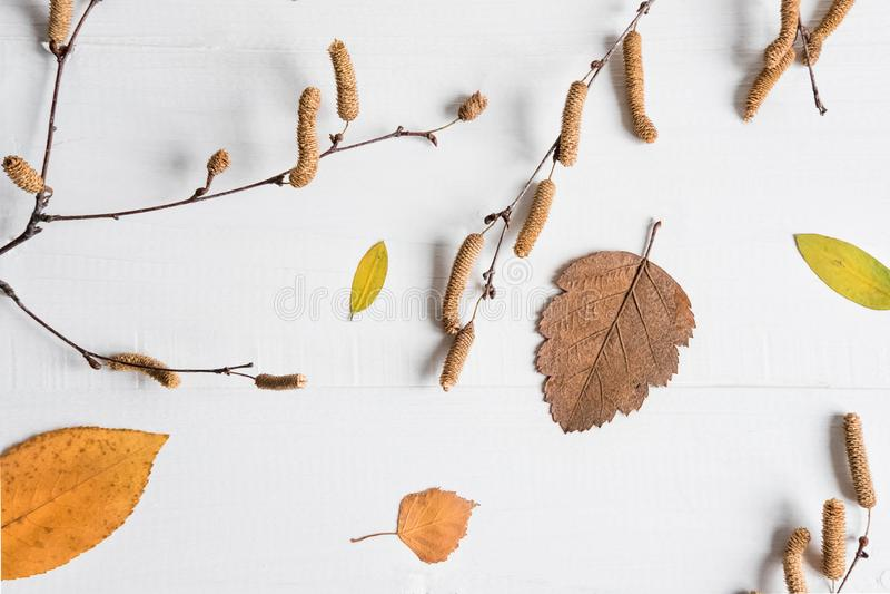 осень яблока миражирует листья состава сухие sacking ваза Знамя осени, предпосылка, рамка Рамка с листьями и место для надписи стоковое изображение