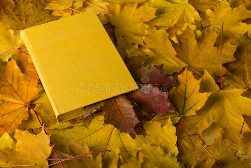 осень яблока миражирует листья состава сухие sacking ваза Книга с закладкой от красных лист стоковые фотографии rf