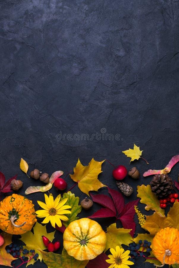 осень яблока миражирует листья состава сухие sacking ваза Рамка сделанная из различных multicolor высушенных листьев и тыквы на т стоковое изображение