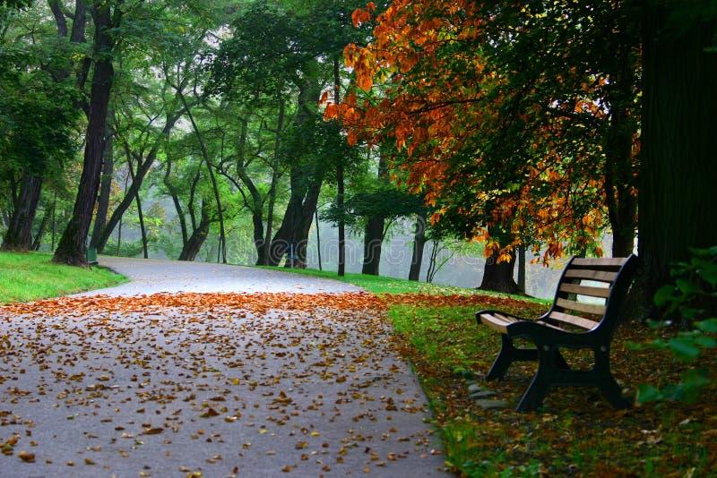 Осень #2 стоковые фото