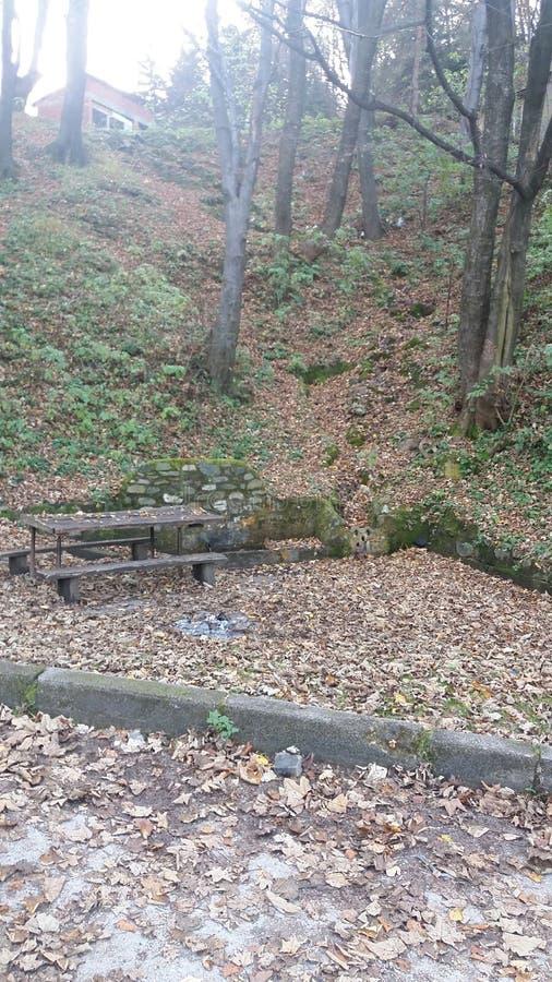 Download Осень стоковое фото. изображение насчитывающей валы, природа - 81802562