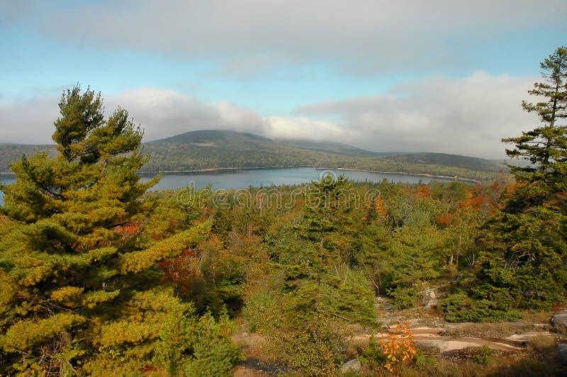осень acadia стоковое фото