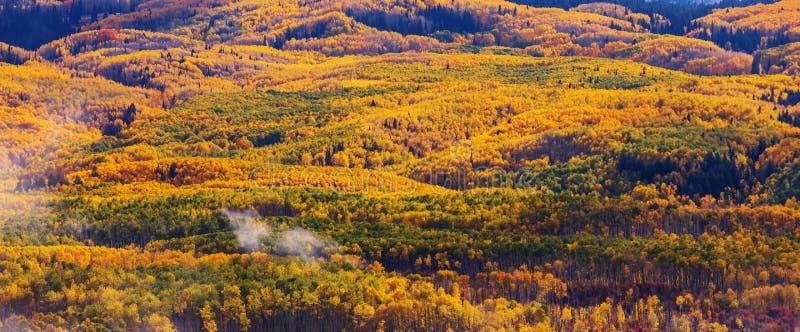 осень colorado стоковая фотография rf