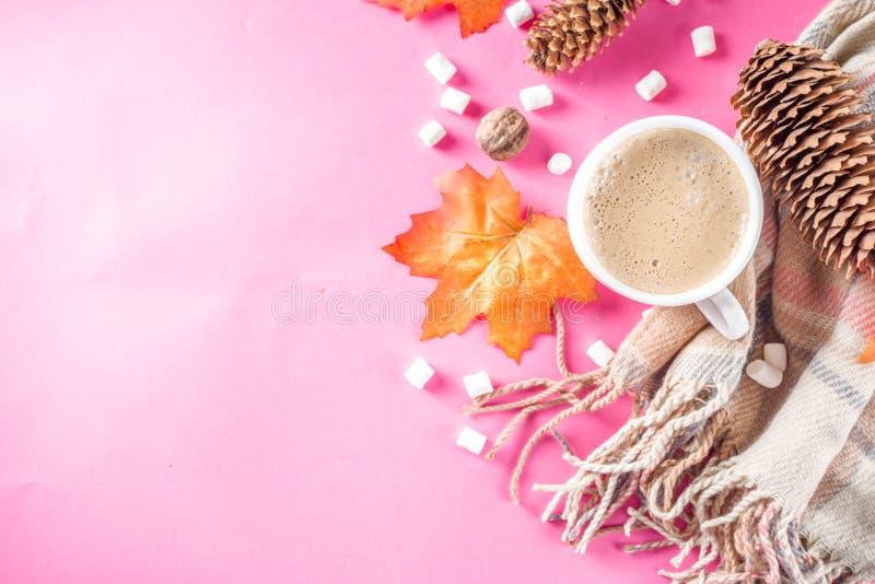 Осень Flatlay с капучино или горячим шоколадом стоковое изображение rf