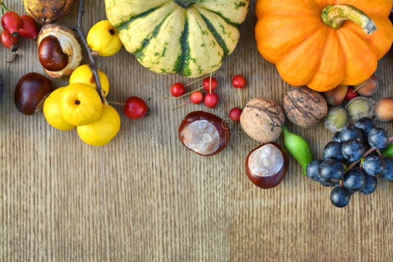 осень fruits гайки стоковые изображения rf