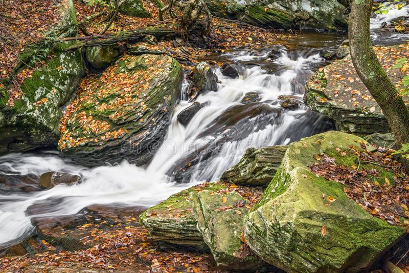 Осень Whitewater Глена Leigh стоковое изображение rf