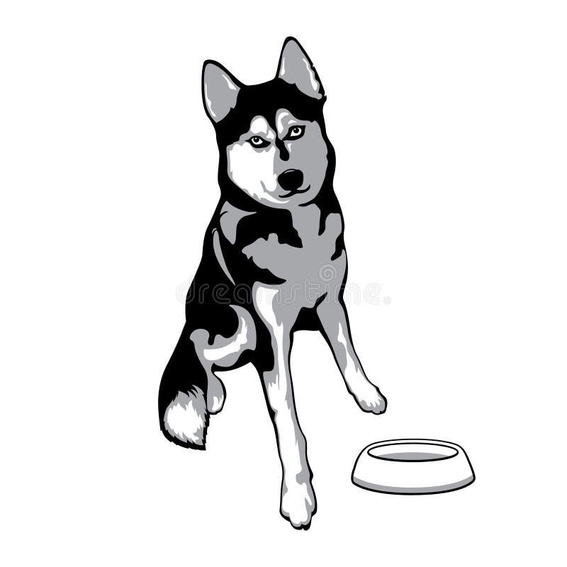 осипло Лайка сидит около плиты Иллюстрация вектора собаки бесплатная иллюстрация