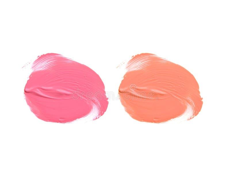 2 лоска губы цветов изолированного на белизне стоковые изображения rf