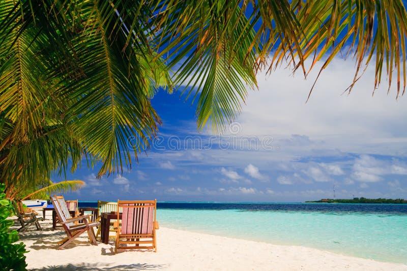 ослаблять рая тропический стоковые фотографии rf