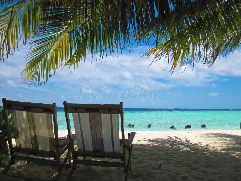 ослаблять рая тропический стоковые изображения