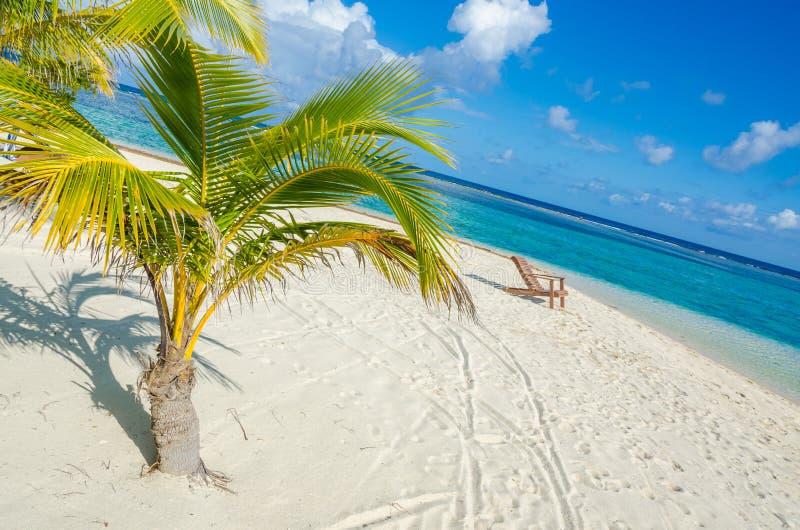 Ослабляющ на стуле - Белизе Cayes - небольшой тропический остров на барьерном рифе с пляжем рая - известный за нырять, и стоковая фотография rf