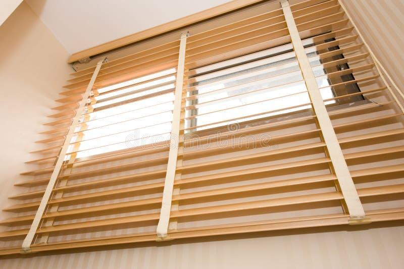 ослепляет древесину стоковые фотографии rf