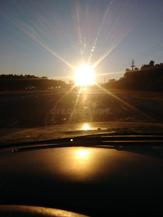 Ослепляя солнце пока управляющ стоковые фотографии rf