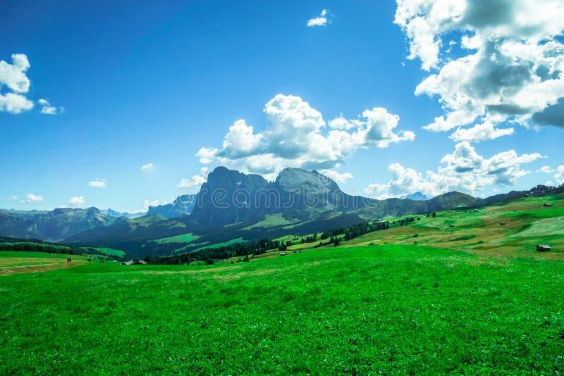 Осмотрите на горах доломитов горной вершиной Seiser стоковая фотография rf