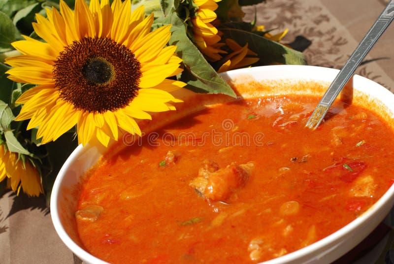 основанный stew паприки рыб горячий стоковая фотография