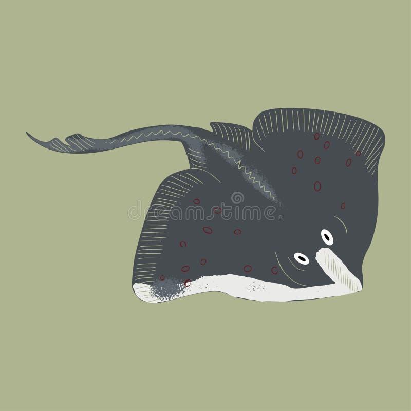 Colorful cartoon stingray illustration. Element for summer design stock images