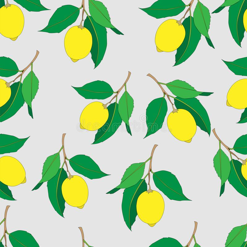 Seamless pattern with lemons  isolated on light gray background. Yellow fresh Fruits with green leaves. Summer design. royalty free illustration