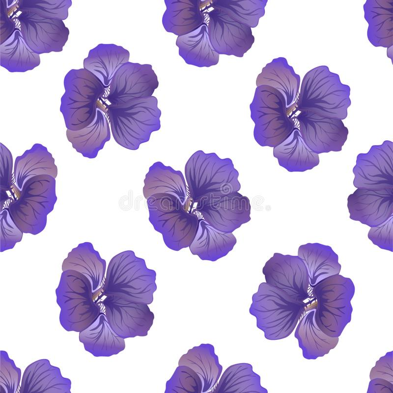 Seamless wild floral pattern with nasturtium. Purple hibiscus flowers on white background. Botanical Motifs scattered random. royalty free illustration
