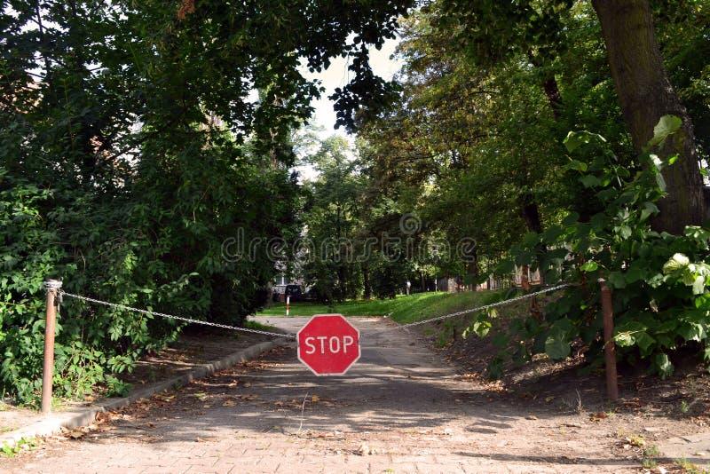 Остановите знак на дороге леса стоковые фото