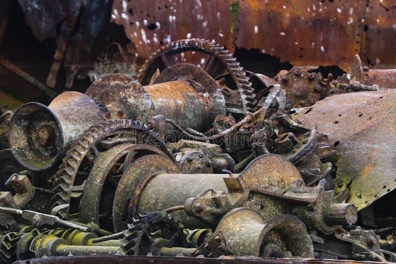 Остатки кораблекрушения китоловства стоковые изображения rf